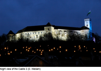 night-view-of-the-castle-d.wedam